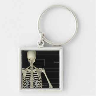 The bones of the upper body Silver-Colored square key ring