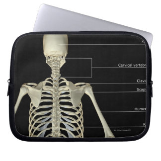 The bones of the upper body laptop sleeve