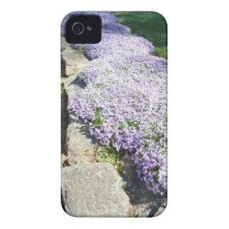 """""""The Border"""" Case-Mate iPhone 4 Cases"""