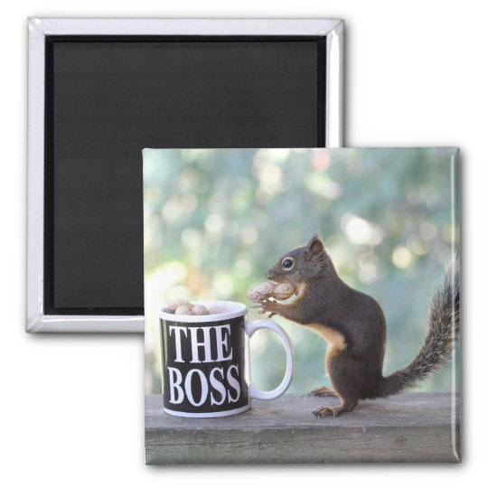 """""""The Boss"""" Squirrel Magnet"""