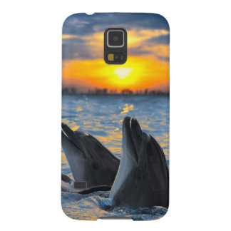 The bottle-nosed dolphins in sunset light galaxy s5 cover