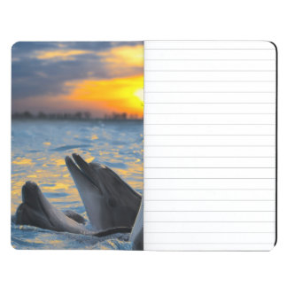 The bottle-nosed dolphins in sunset light journal