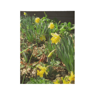 The Bowing Daffodils Poster