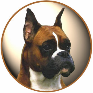The Boxer Dog Standing Photo Sculpture