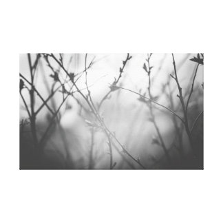 The branches against the sky canvas print