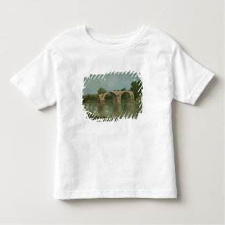 The Bridge at Ambrussum Toddler T-Shirt
