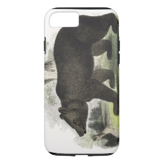 The Brown Bear, educational illustration pub. by t iPhone 8/7 Case