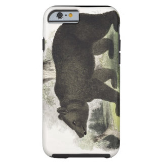 The Brown Bear, educational illustration pub. by t Tough iPhone 6 Case