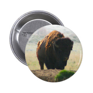 The Buffalo Collection II 6 Cm Round Badge