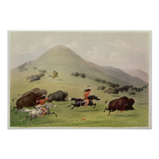 The Buffalo Hunt, c.1832 Poster