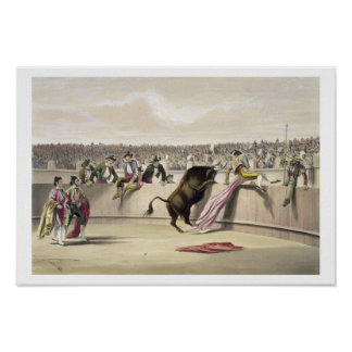 The Bull Leaping the Barriers, 1865 (colour litho) Poster