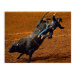 The Bull Rider Postcard