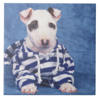 The Bull Terrier is a breed of dog in the Large Square Tile