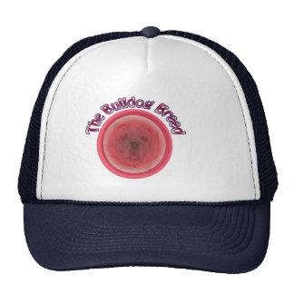 The Bulldog Breed Mesh Hats