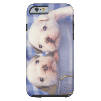 The Bulldog, often called the English Bulldog, Tough iPhone 6 Case