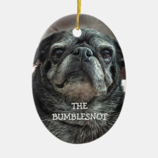 """The Bumblesnot """"Adopt Don't shop!"""" oval ornament"""