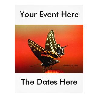 The Butterfly 21.5 Cm X 28 Cm Flyer