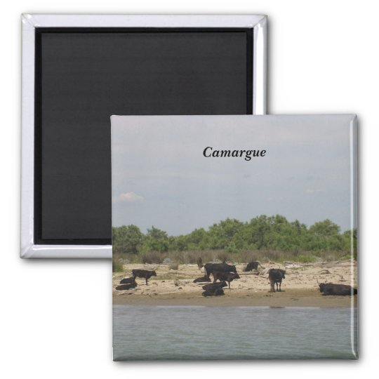 The Camargue - Square Magnet