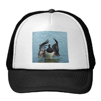 The Canada Goose Branta Canadensis Mesh Hat