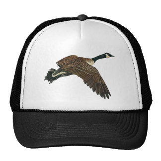 THE CANADIAN GOOSE HATS