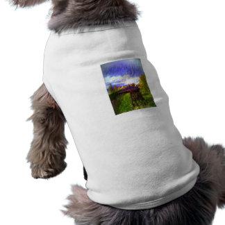 The Canon Shirt