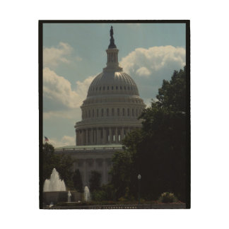 The Capitol Wood Wall Art