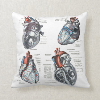 the Cardiologist's Pillow Cushion