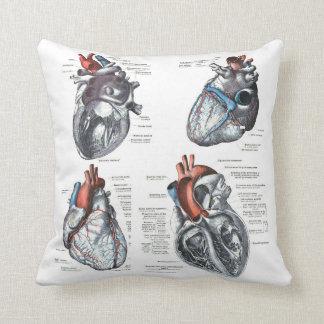 the Cardiologist's Pillow Cushion