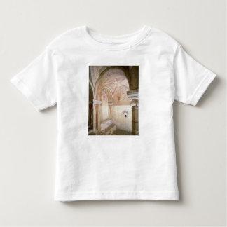 The Carolingian frescoes in the inner crypt Toddler T-Shirt