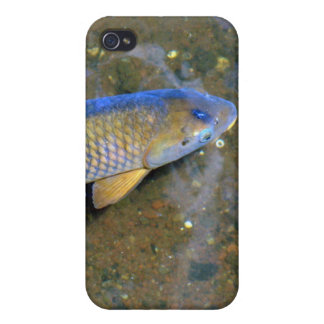 The Carp Cases For iPhone 4