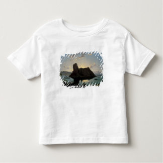 The Castle of Deveny, Hungary Toddler T-Shirt