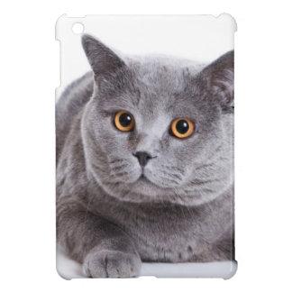 the cat iPad mini cases