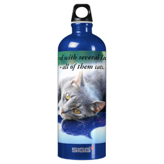 The Cat - Zen Master SIGG Traveller 1.0L Water Bottle