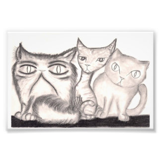 The Cats Art Photo