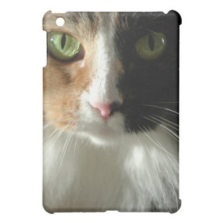 The Cat's Eyes iPad Mini Case