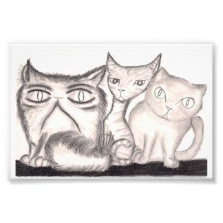 The Cats Art Photo