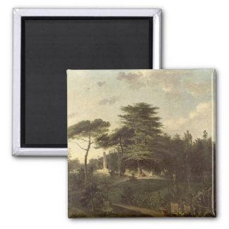 The Cedar of Lebanon in the Jardin des Plantes Magnet