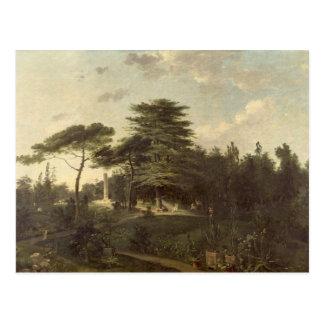 The Cedar of Lebanon in the Jardin des Plantes Postcard