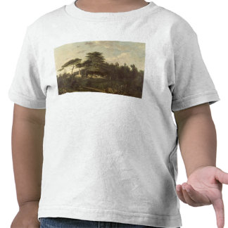 The Cedar of Lebanon in the Jardin des Plantes Tee Shirts