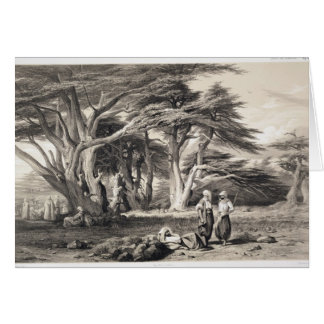 The Cedars of Lebanon, engraved by Freeman (sepia Card