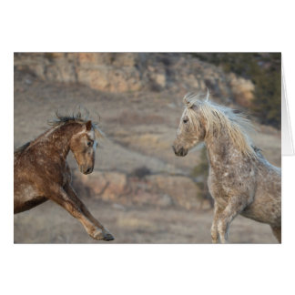 The Challenge - Galloping to Freedom Greeting Card