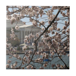 The Cherry Blossoms In Bloom In Washington DC Small Square Tile