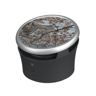 The Cherry Blossoms In Bloom In Washington DC Speaker