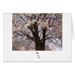 The cherry tree in Japan 1 Greeting Card