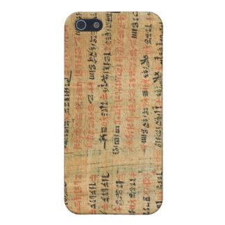 The Chester Beatty Medical Papyrus iPhone 5/5S Case