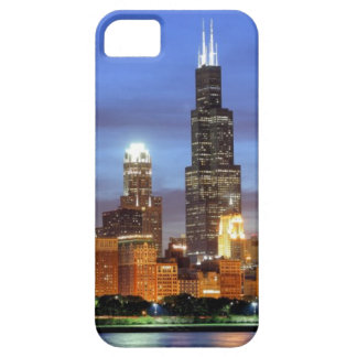 The Chicago skyline from the Adler Planetarium Case For The iPhone 5
