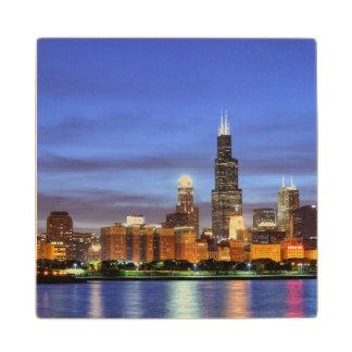 The Chicago skyline from the Adler Planetarium Wood Coaster