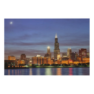 The Chicago skyline from the Adler Planetarium Wood Wall Art