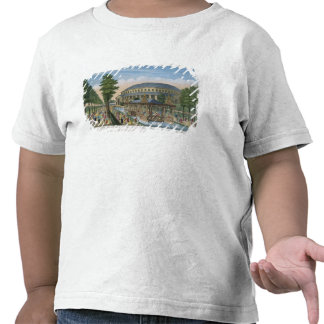 The Chinese House, the Rotunda and the Company in Tee Shirts