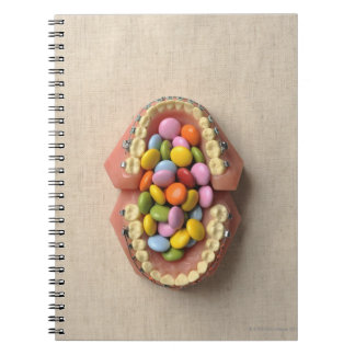 The chocolate served in the dental model notebook
